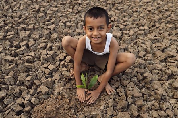 Um garoto asiático está tentando cultivar uma árvore em um terreno estéril e rachado.