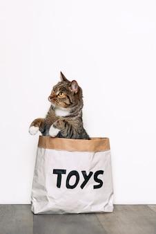 Um gato engraçado senta-se em um saco de papel kraft com os brinquedos de inscrição e brincando com uma pata. animais engraçados, jogando em casa.