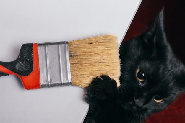 Um gato preto bonito está brincando com um pincel para reparo sem tinta. garras pegaram as cerdas do mato. vista de cima