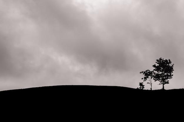 Um grupo de árvores saiu na montanha com nuvens escuras.