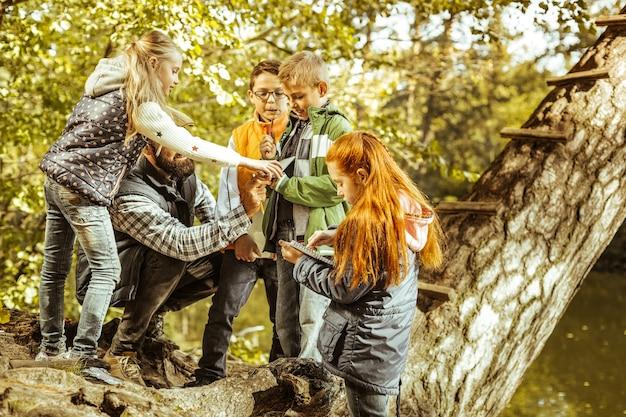 Um grupo de crianças na floresta com o professor em um dia bom