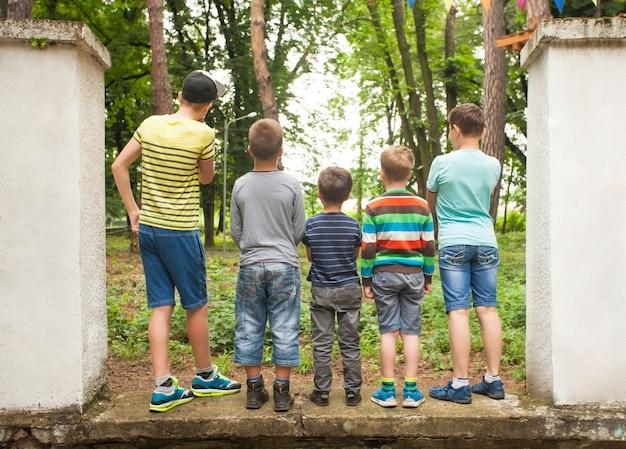 Um grupo de meninos olhando para uma árvore na vista traseira do parque