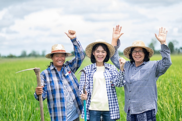 Um grupo de três mulheres agricultoras asiáticas estava sorrindo e erguendo as mãos para o campo de arroz verde