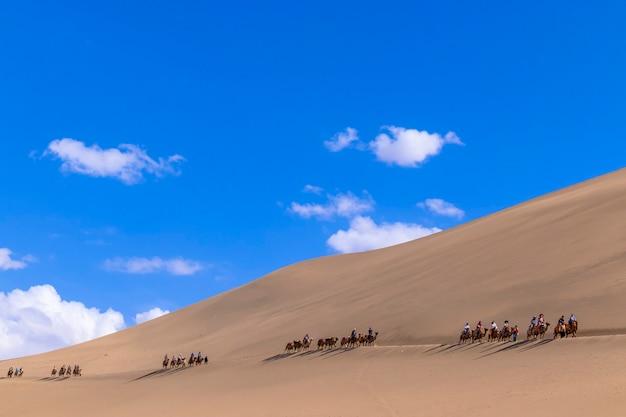 Um grupo de turistas está andando de camelo na montanha de areia do deserto mingsha shan ou nas dunas de areia cantantes com a caravana como parte da rota da seda em dunhuang, gansu, china.
