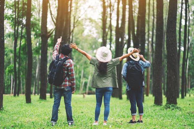 Um grupo de viajantes com mochila em pé e olhando para um belo pinhal