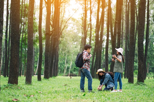 Um grupo de viajantes conversando durante uma caminhada em um belo pinhal