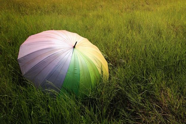 Um guarda-chuva no campo verde em dia chuvoso.