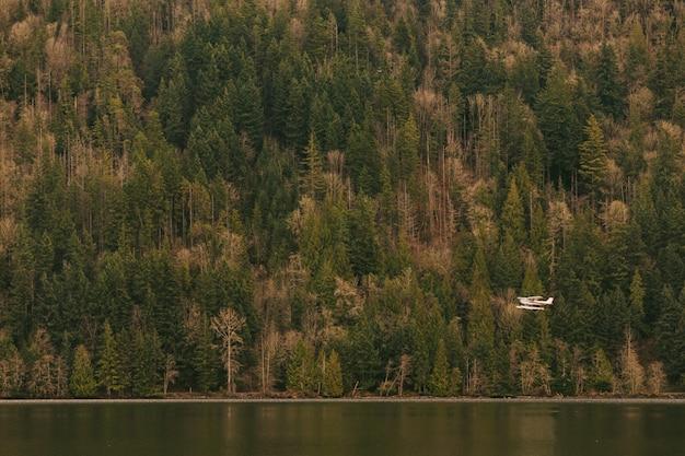 Um hidroavião voando baixo acima de um lago