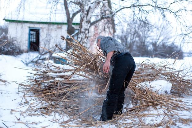 Um homem abriga um campo de junco seco, aquece plantas no inverno