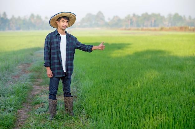 Um homem asiático com uma camisa listrada azul está de pé em um campo com o polegar para cima.