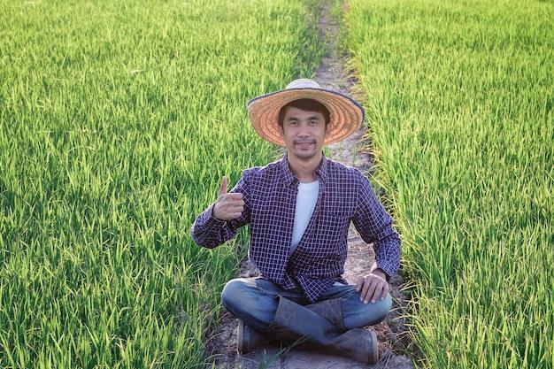 Um homem asiático vestindo uma camisa listrada azul está sentado feliz e com o polegar para cima no campo de arroz.