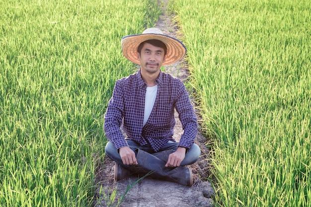Um homem asiático vestindo uma camisa listrada azul está sentado, feliz, observando a produção no campo de arroz.