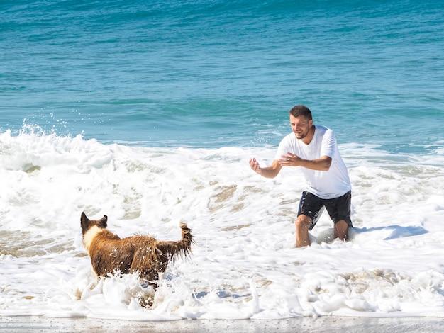 Um homem brinca com um cachorro na praia do oceano. dia de sol e grandes ondas.