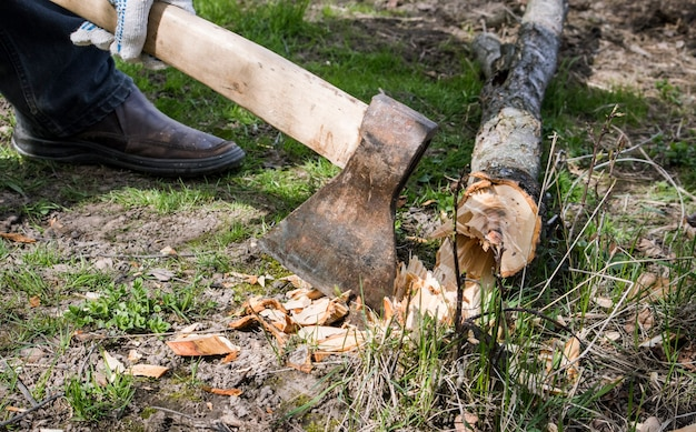 Um homem com um machado próximo a uma árvore que ele derrubou.