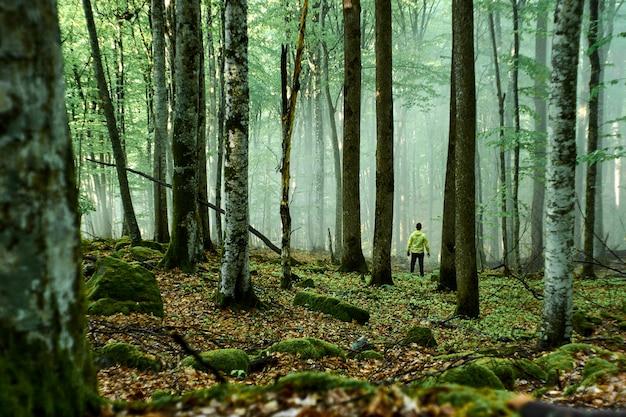 Um homem com uma capa de chuva amarela fica em uma floresta nublada sem estrada. perdido na floresta.