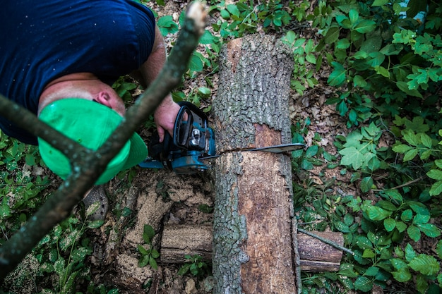 Um homem com uma serra elétrica corta a árvore
