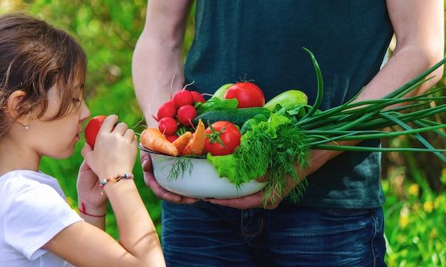 Um homem e seu filho no jardim com vegetais nas mãos