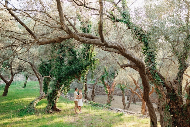 Um homem e uma mulher se abraçando perto de uma bela árvore coberta de hera em um olival.