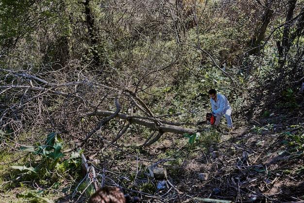 Um homem está cortando uma árvore caída na floresta.