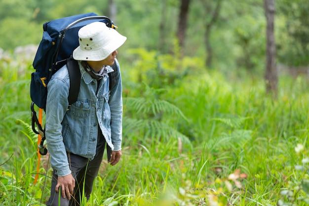 Um homem feliz caminhadas atravessa a floresta com uma mochila.