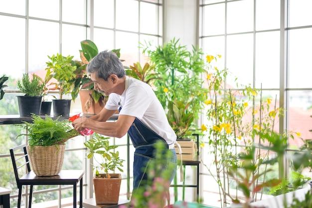 Um homem idoso asiático aposentado feliz, pulverizando e regando árvore, aproveita as atividades de lazer em casa