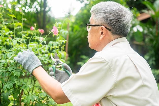 Um homem idoso asiático feliz e sorridente está podando galhos e flores como um hobby após a aposentadoria em uma casa.