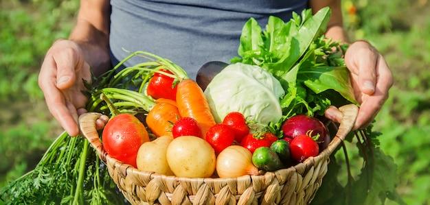 Um homem no jardim com legumes nas mãos