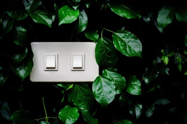 Um interruptor de luz elétrica doméstica branca em uma parede de folhas.