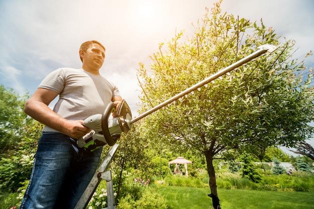 Um jardineiro aparar árvores com aparador de cerca viva