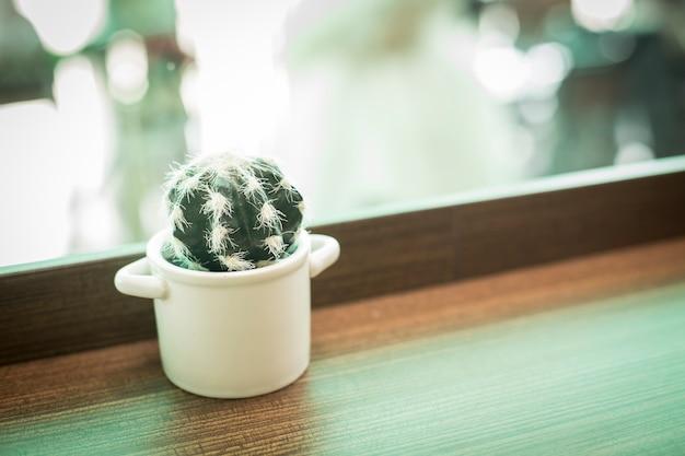 Um jarro branco de cactus na mesa de madeira