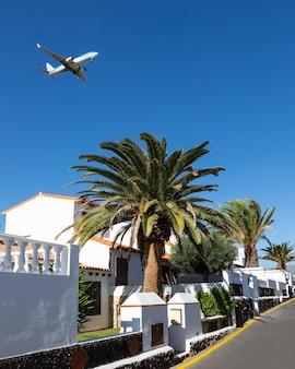 Um jato comercial decolando sobre uma palmeira na ilha de tenerife