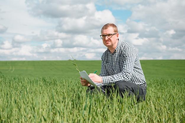 Um jovem agrônomo trabalha em um campo de trigo
