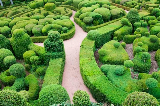 Um labirinto de sebes