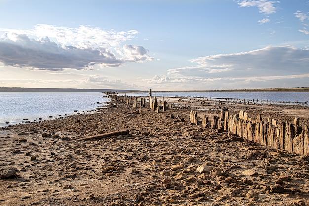 Um lago morto e velhos troncos de sal surgem da água