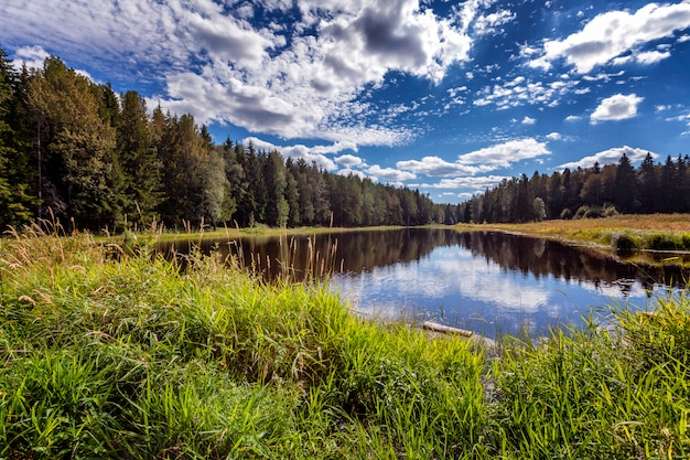 Um lago transparente bonito da floresta com um céu azul brilhante que reflete nele.