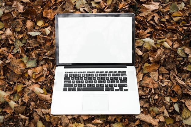 Um laptop aberto com tela branca em branco no outono folhas