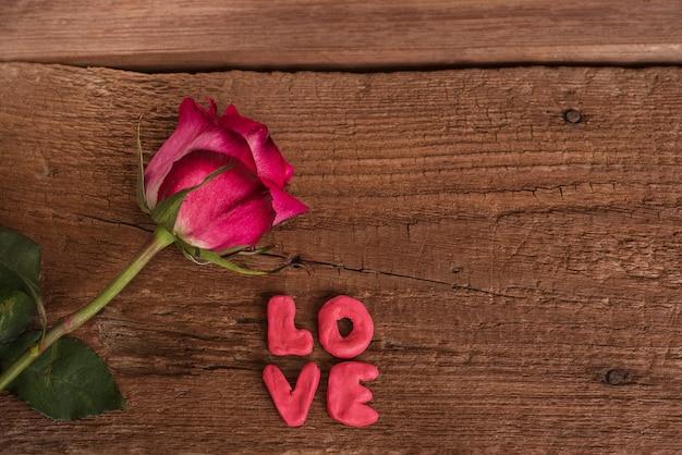 Um lindo botão de uma rosa em flor e a inscrição