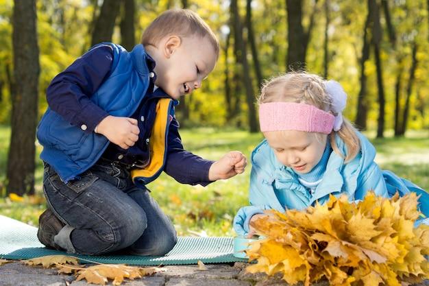 Um lindo irmão e uma irmã brincando em uma floresta de outono juntando folhas amarelas de outono