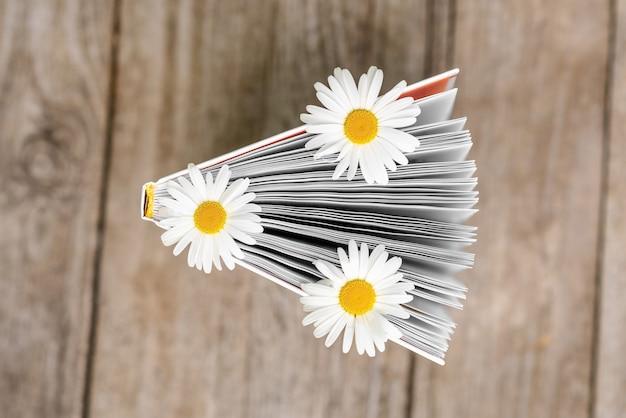 Um livro aberto com flores de camomila entre as bordas.
