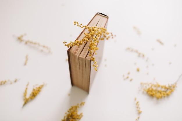Um livro com flores de mimosa amarela em branco