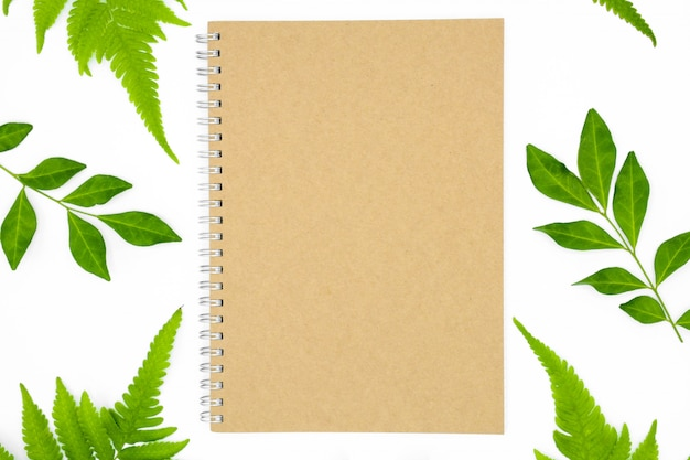 Um livro com folhas verdes, isolado no fundo branco