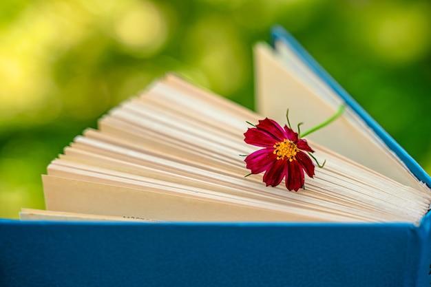 Um livro com uma flor uma bela natureza morta em um jardim de verão