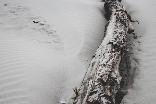 Um log deitado na areia