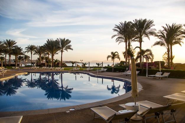 Um lugar para relaxar perto da piscina com espreguiçadeiras e palmeiras. egito. sharm el sheikh