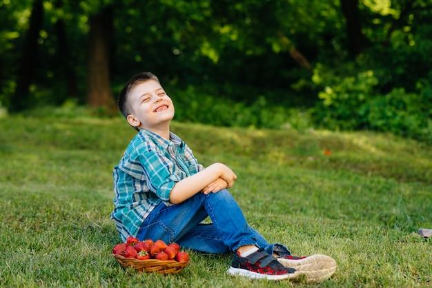 Um menino bonitinho está sentado com uma grande caixa de morangos maduros e deliciosos