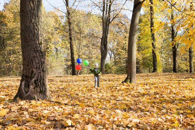 Um menino caminha no parque de outono em um clima quente e ensolarado