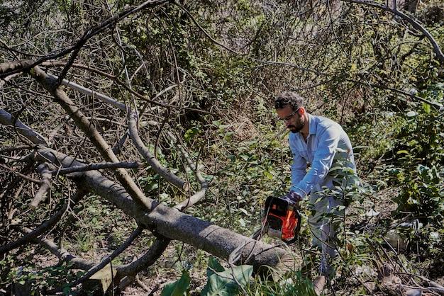 Um menino com uma motosserra corta o tronco de uma árvore caída.