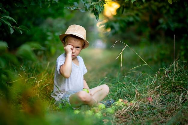 Um menino de cinco anos está sentado na grama com maçãs em um jardim com macieiras e esfrega os olhos com a mão