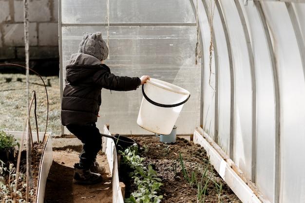 Um menino está plantando e regando mudas de vegetais em uma estufa, uma colheita ecológica precoce