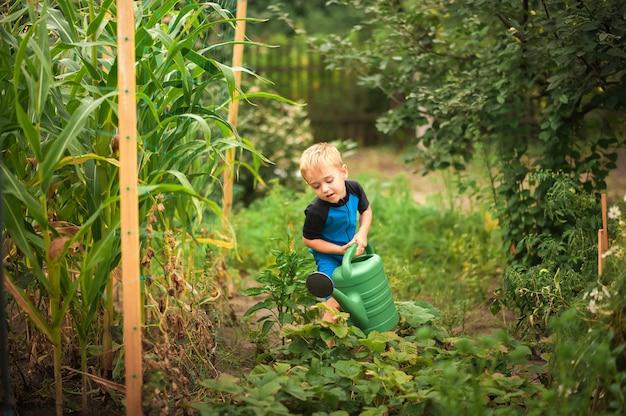 Um menino regando flores e uma horta com um regador.
